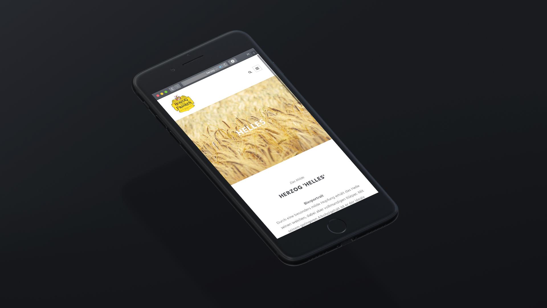 Website HvF Vorschau iPhone